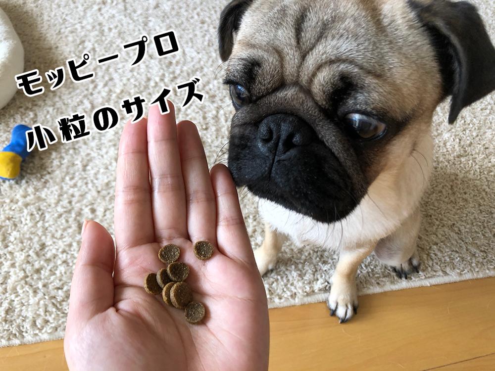 モッピー プロ小粒のサイズ